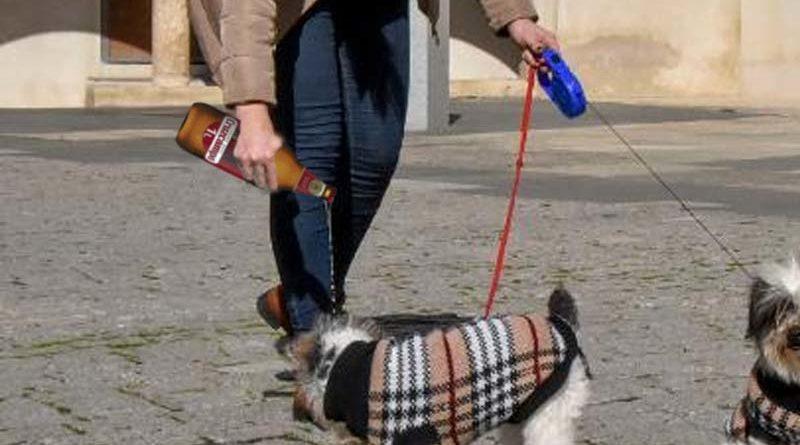 Cruzcampo, patrocinadora oficial de las botellas para limpiar pis de perro