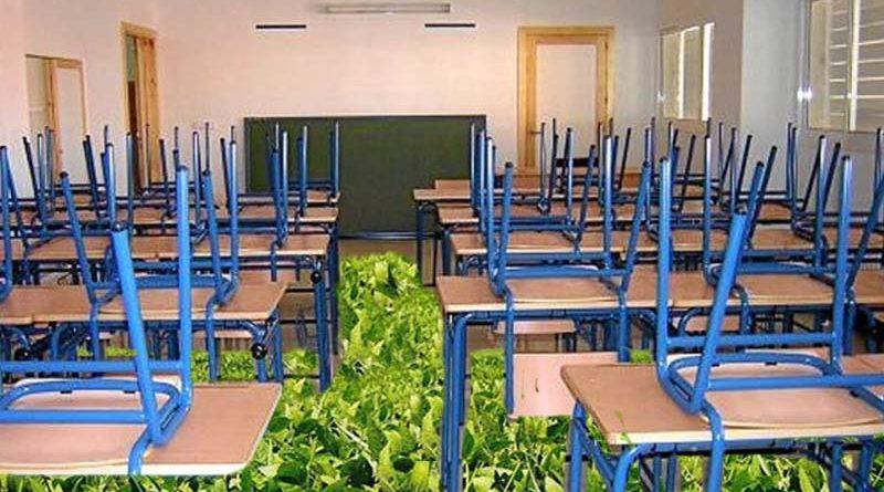 Cierran un colegio en Sevilla por un rebrote de soja